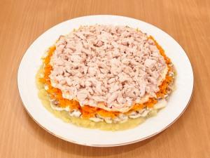 Выкладываем на слой из моркови, куриное филе. Немножко добавить соль, проложить майонез для смазки.