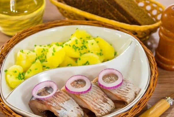 Сельдь соленая, рецепт с фото