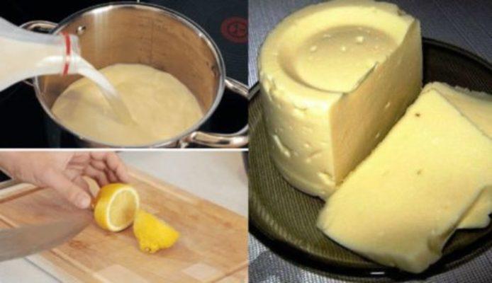 Домашний сыр за 3 часа. Пошаговый рецепт
