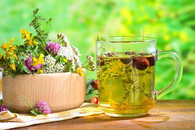 8 растений для крепкого иммунитета